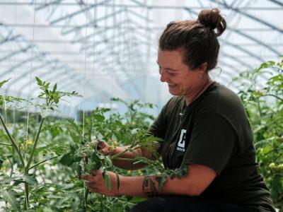Fermière dans une serre de tomates